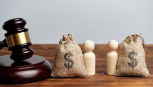 What is Equitable Distribution in Virginia?